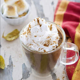 PUMPKIN HOT CHOCOLATE WITH TOASTED MARSHMALLOWS